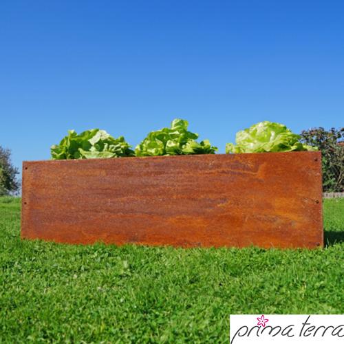 Hochbeete Planus Edelrost Niederbeete Bei Garten Online Produkt